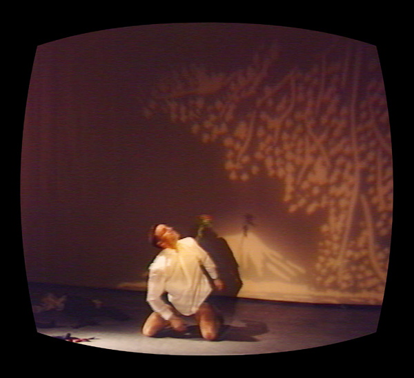 Mr. D'S Journey To The Heart Of Lightness, Tanya Bonakdar Gallery, New York, 1995